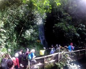 carson-waterfall11